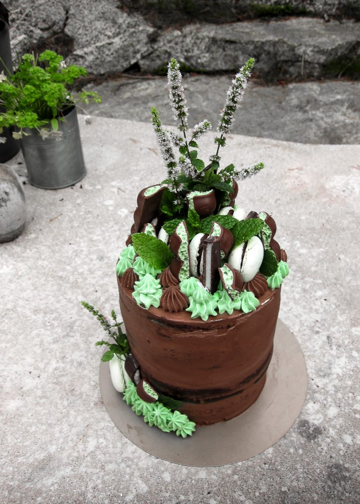 mint chocolate cake for ben front 1