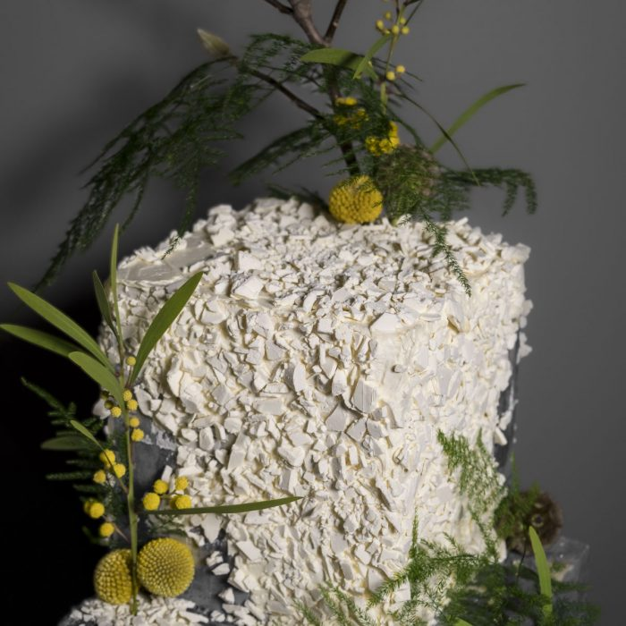 Cake 2 for Interface – Nature
